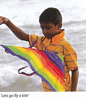 Kite flying on Galle Face Green