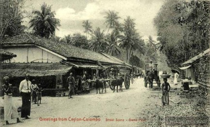 Typical street scene at Grand Pass Colombo in 1890-1900 Sri Lanka